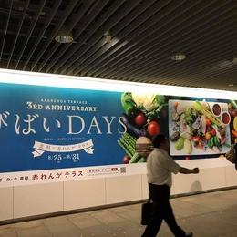札幌地下歩行空間 「びばいDAYS」