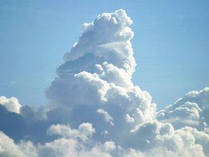 taifuu 2.jpg