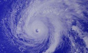 taifuu 5.jpg