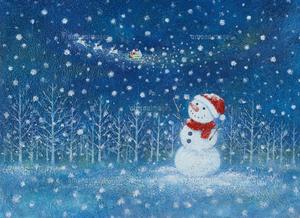 02109010001 雪.jpg